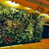 Искусственний напольный крытый франтовской завод сада