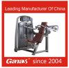 Machine de gymnastique d'équipement de bâtiment de corps de presse d'épaule d'équipement de gymnastique de modèle de l'Italie