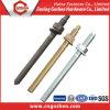 Ancoraggio chimico M12 del acciaio al carbonio Yzp/Bzp/HDG