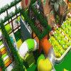 Patio de interior comercial usado de los niños de los cabritos