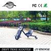 Motocicleta elétrica da alta qualidade 100W para a venda