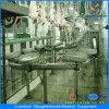 Terminar a planta automática da chacina do porco