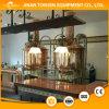 Mini, micro fabricação de cerveja de cerveja, equipamento 600L da cerveja do Brew Home
