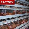 Kooi van de Kip van de Laag van het Ontwerp van de Batterij van de Apparatuur van het Landbouwbedrijf van het gevogelte de Automatische