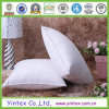 Polyester 100% Healthcare Pillow mit SGS Verification
