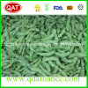 IQF Frozen None GMO Soybean with HACCP Brc Certification