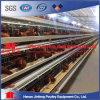 Cage en acier en U de poulet de ventes élevées pour des couches/grilleur/poulette