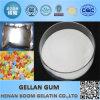 Gomme élevée de Gellan d'acyle de la catégorie comestible USP