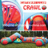 Crawl gonfiabile di Cameron Caterpiller (BMIA63)