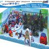 Campo de jogos impertinentes internos dos desenhos animados do castelo da aventura das crianças (HK-50207A)