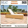 プールのLounger/のLounger/の屋外の家具(SC-FT012)