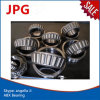 Roulement à rouleaux de cône des prix concurrentiels de Lm67049A/14 Lm78349/10 Lm806649/10