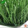 Bon matériau d'arrivée neuve aménageant l'herbe artificielle de sports