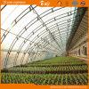 식물성 설치를 위한 좋은 열 절연제 태양 온실
