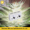 Fachkundiger medizinische Pflanzenwachsender PFEILER 400W LED wachsen Licht