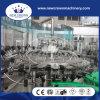 Het Vullen van het Water van de Kokosnoot van China Machine de Van uitstekende kwaliteit voor de Fles van het Glas met Draai van GLB