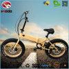 elektrisches Fahrrad En15194 des fetten Gummireifen-250W