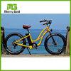 Tipo 26  bici eléctrica de MTB del ciclo gordo del neumático E