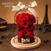 Fiore reale naturale di 100% Rosa in vetro per il regalo di compleanno del biglietto di S. Valentino