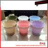 Литье пластмасс под давлением / Бытовая Цветочный горшок Плесень в Китае