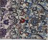 Os multi projetos imprimiram o laço de curva tingido fio da tela de Paisley do algodão