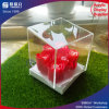 Caja de presentación tallada de acrílico transparente del florero