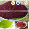 Red organico Yeasted Rice Powder per Food Pigment