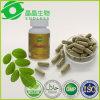 Marque de distributeur Green Leaf 500mg Moringa Capsules