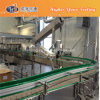 Haustier und Glass Bottle Conveyor Chain