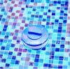 Flotteur de tablette de chlore de piscine