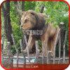 動物園の装飾の実物大動物の彫像