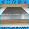 Materiais de construção para a madeira compensada de Construction//Marine/madeira compensada do molde