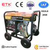 전력 휴대용 디젤 엔진 발전기 세트 (DG3LE)