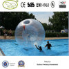 Precio de la bola de Zorb del agua de la alta calidad de Fwulong