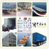 中国からの東のオーストラリアに貨物出荷のロジスティクスサービスを強化しなさい