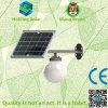 Indicatore luminoso esterno LED della luna solare Integrated di IP65 con il sensore di a microonde