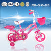Form Child Bicycle Kids Bicycle für Young Girls Jsk-Gkb-015