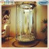 De Menselijke Prijs van het Glas van de passagier Mechanische Mini de Kleine Lift van de Mens