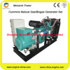 WS 3 Phases 50/60Hz Natural Gas Generator Set