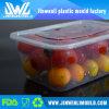 Contenitore di alimento di plastica a perdere del commestibile