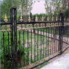Wrought residenziale Iron Fence con Galvanized Steel