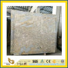 Ariston novo Gold Polished Granite Stone Slab para Wall/Floor/Stair Tiles
