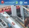 Половинный сарай цыпленка отверстия класть оборудование фермы для Нигерии (A-3L90)
