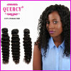Quercy Hair Top Quality 100%年のHumanインドのDeep Wave Hair (w-075)