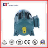 motor de inducción trifásico de la CA de la serie de 3HP 50Hz Yx3-100L2-4