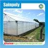 Парник тоннеля полиэтиленовой пленки горячего сбывания 2016 одиночные для томата и аграрно