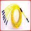 MPO de Verbindingsdraad Om4 MPO Upc F van de Vezel van het Flard Cord/Om4 - de Vezel Optische Patchcord van MPO Upc F