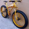 حارّة يصدق الصين مصنع 2015 سمين إطار العجلة درّاجة/ثلج [متب] سمين إطار العجلة درّاجة [أكم-137]