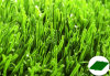 Filato sintetico/artificiale dell'erba
