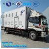 Hoogte van de Verkoop van China onderwijst de Hete het Kuiken Geïsoleerdet Lichaam van de Vrachtwagen